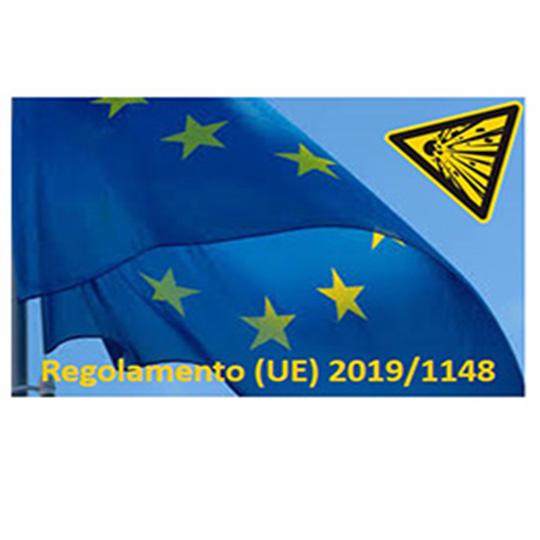 regolamentoeu20191148 new
